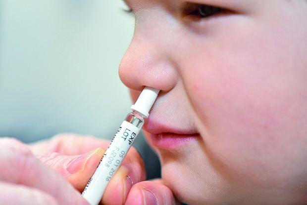 Pesquisadores afirmam que vacinas por spray nasal são mais eficazes contra vírus respiratórios - (Foto: Reprodução/BMJ)
